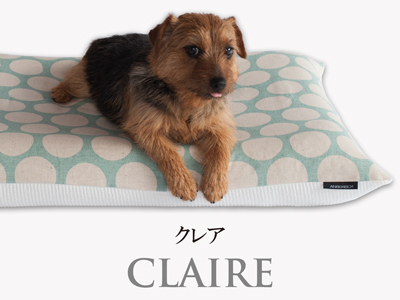 Banner-slide_claire