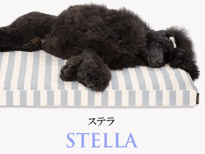 Banner-slide_stella-gr
