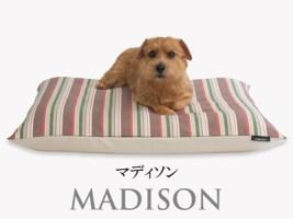 Banner-slide_madison-PB