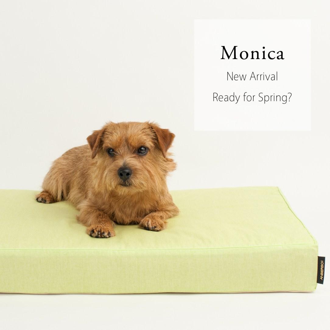 monica-1