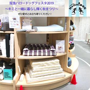 阪急ハロードッグフェスタ2019 ~キミと一緒に暮らし輝く秋まつり~にアンベルソも参加いたします!