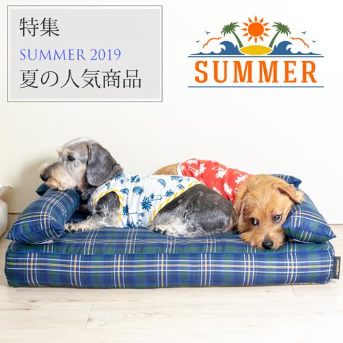特集:夏の人気商品