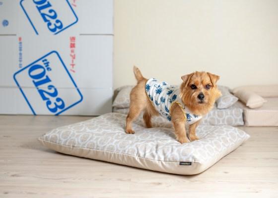 プレミアムベッド用ベッドカバー:エルモ(アクアグレー)|犬のベッド:アンベルソ