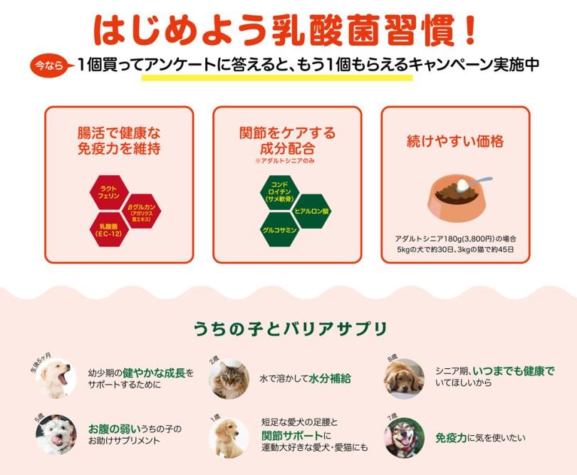 キャンペーン:乳酸菌サプリ バリアサプリ|犬のベッド:アンベルソ