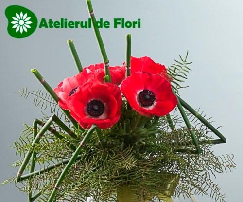 Buchet cu anemone rosii