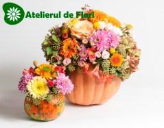 Bostani cu flori de toamna