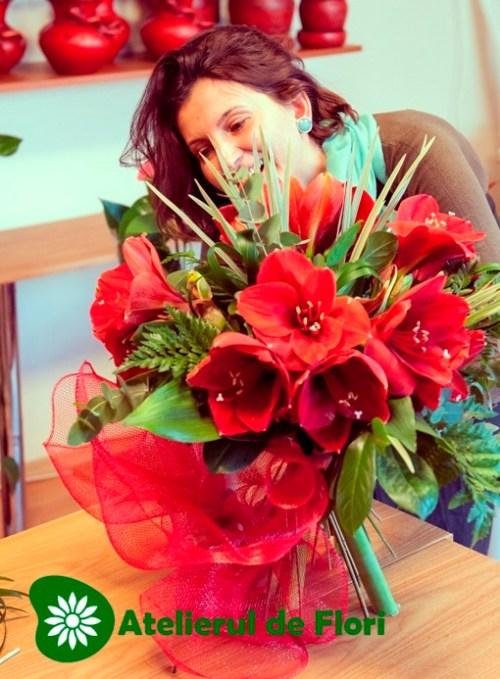 Atelierul de flori amarylys rosu