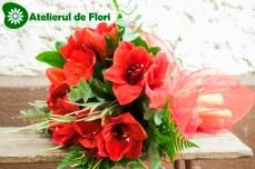 Buchet cu amarylys rosu valentine