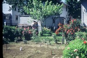 Family Photo of Garden