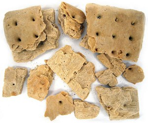 Broken piece of hardtack from collection of Minnesota Historical Society.