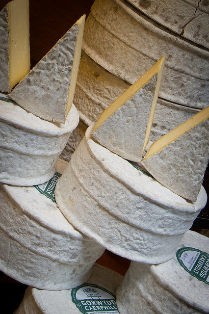Welsh Cheese