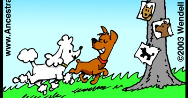 Dog Family Tree (Genetoons Cartoon #009)