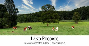 Land Records: Substitutes for the 1890 US Federal Census