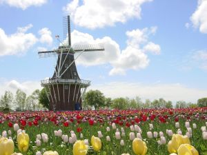 discover-holland
