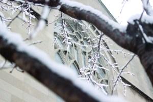 snow_hope-7