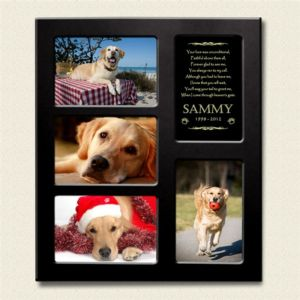 dog photo frame