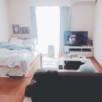 Amazing Ideas Decorating Studio Apartment 15