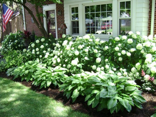 Beautiful Flower Garden for Your Front Yard 39