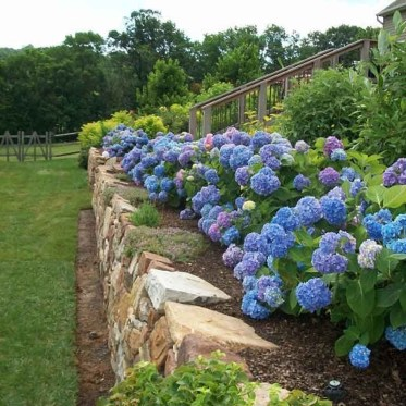 Clever & Beautiful Yard Island Landscaping for Backyard and Front yard 49