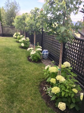 Easy And Low Maintenance Front Yard Landscaping Ideas 26
