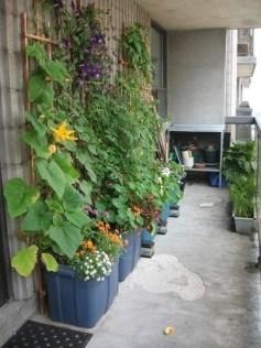 Amazingly Creative Long Planter Ideas for Your Patio 43