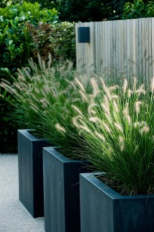 Amazingly Creative Long Planter Ideas for Your Patio 45