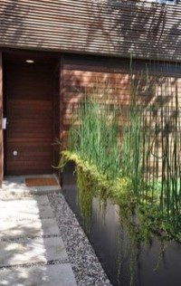Amazingly Creative Long Planter Ideas for Your Patio 47