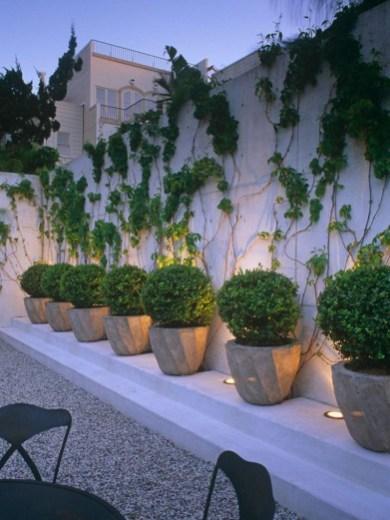 Amazingly Creative Long Planter Ideas for Your Patio 53