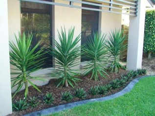Awesome Gardening Ideas on Low Budget 37