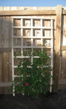 Cool DIY Garden Trellis Ideas 06
