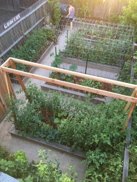 Cool DIY Garden Trellis Ideas 08