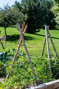 Cool DIY Garden Trellis Ideas 28