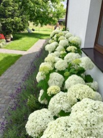 Landscaping Front Yard Ideas to Beautify Your Garden Design 06