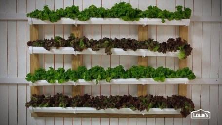 Stunning DIY Vertical Garden Design Ideas 13