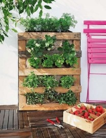 Stunning DIY Vertical Garden Design Ideas 22