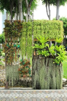 Stunning DIY Vertical Garden Design Ideas 29