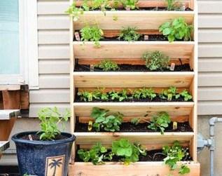 Stunning DIY Vertical Garden Design Ideas 37