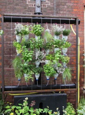 Stunning DIY Vertical Garden Design Ideas 53