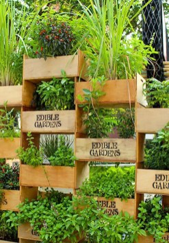 Stunning DIY Vertical Garden Design Ideas 55