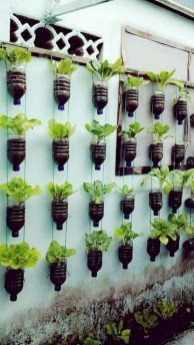 Stunning DIY Vertical Garden Design Ideas 56
