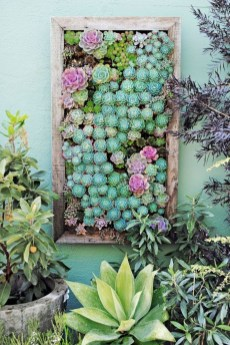 Stunning DIY Vertical Garden Design Ideas 57