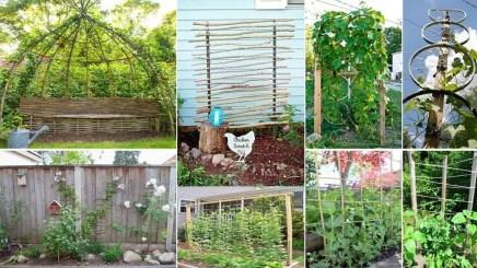 Cheap DIY Garden Ideas Everyone Can Do It 17