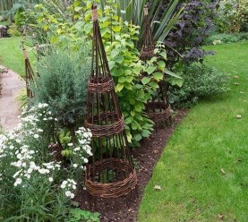 Clever Gardening Ideas with Low Maintenance 04