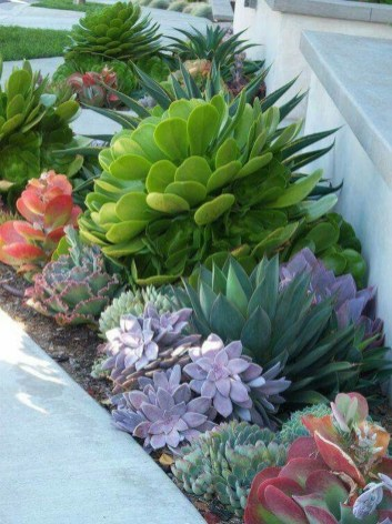 Clever Gardening Ideas with Low Maintenance 14