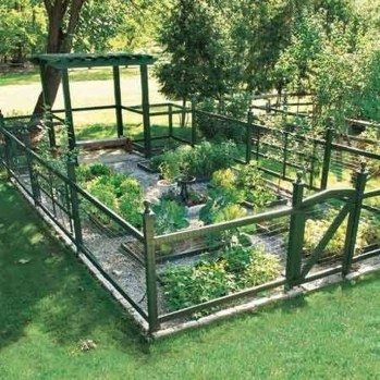 Clever Gardening Ideas with Low Maintenance 17