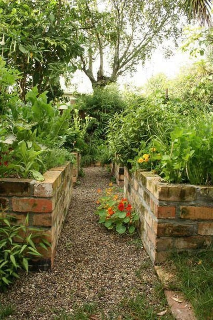 Clever Gardening Ideas with Low Maintenance 34
