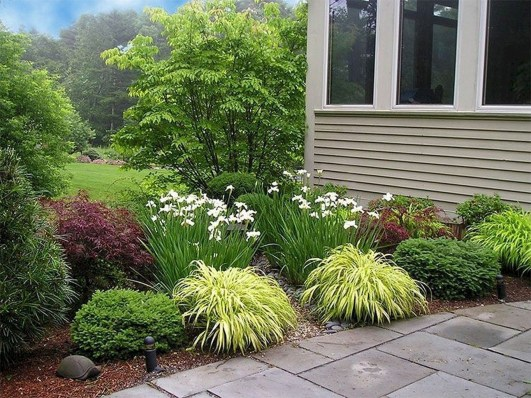 Gardening Tips- Maintenance Landscaping Front yard 16