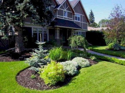 Gardening Tips- Maintenance Landscaping Front yard 48