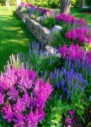 Most Amazing Front Yard and Backyard Landscaping Ideas 45