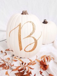 Gorgeous Pumpkin Decorating Ideas 30